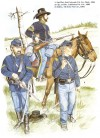 US Cavalry on the Plains, 1850-90