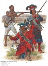 The Seminole and their Allies, 1817-19