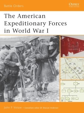 The American Expeditionary Forces in World War I