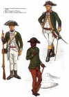 The American Provincial Corps 1775-1784