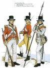 Wellington's Infantry, Cape of Good Hope, 1795