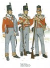 The Light Infantry