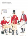 Light Infantry Officers, c. 1808