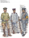 Warlord Troops, 1911-17