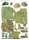 SPECIAL FORCES CLOTHING AND INSIGNIA IN VIETNAM