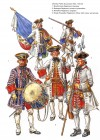 Infantry, Polish Succession War, 1734-1735