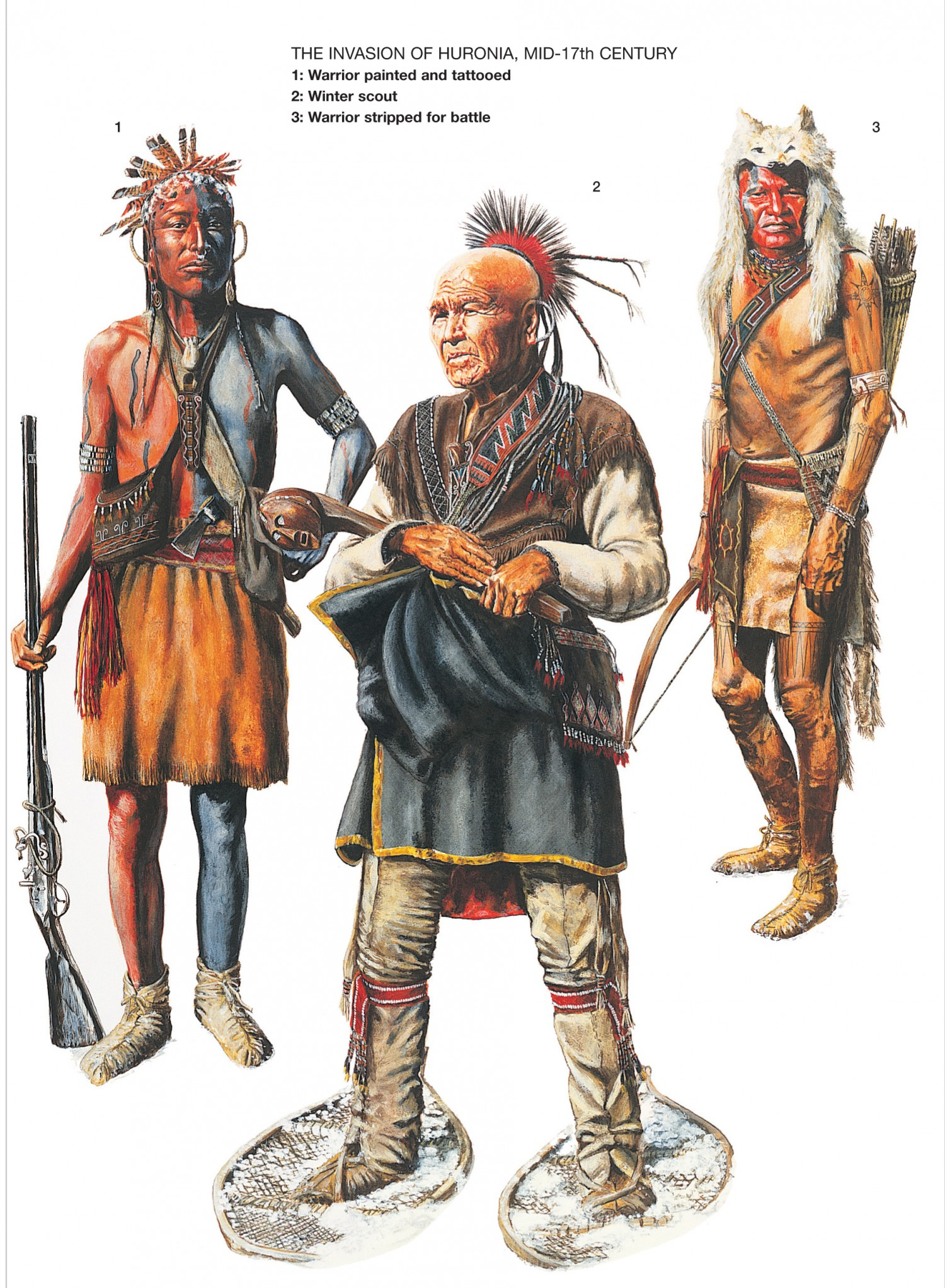 the founding of the iroquois league of nations and its role in american freedom push Each of these native american nations has beliefs in tribal sovereignty and a collective body called a league these nations had a supralevel affirmation in the sovereignty of the two leagues between onondaga and new york.