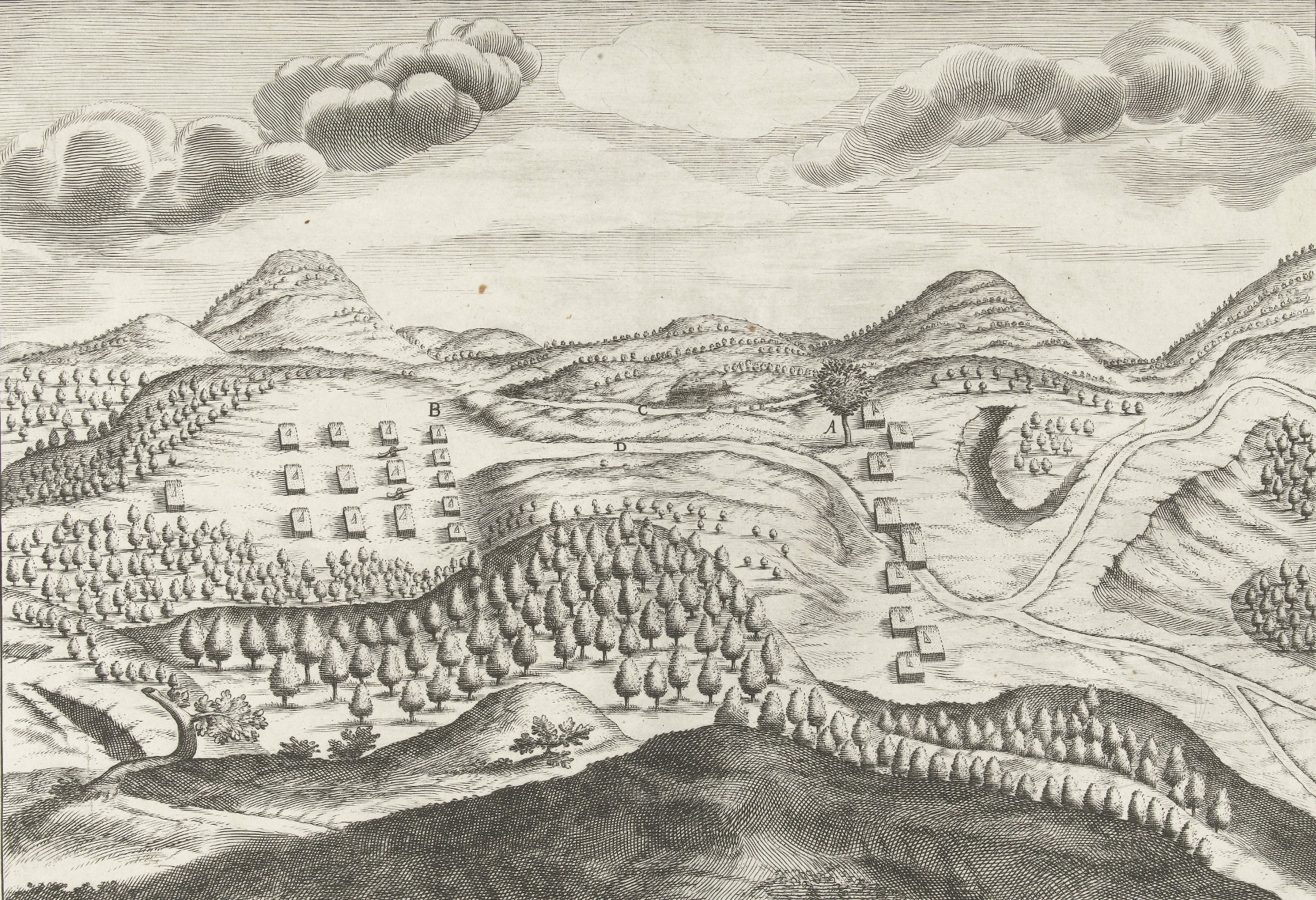 battle of porto calvo