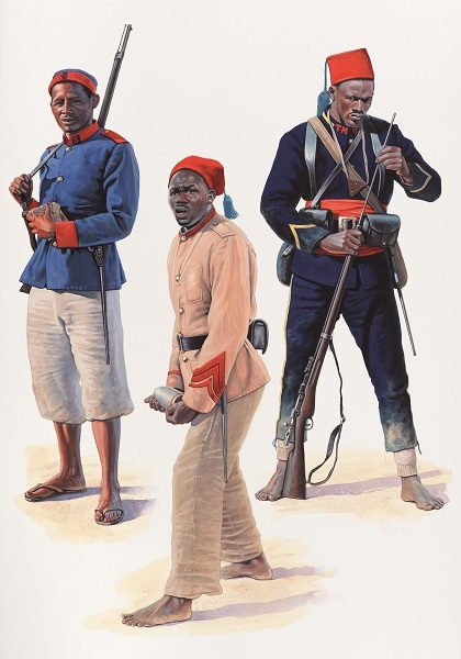 French Naval & Colonial Troops 1872–1914 artwork